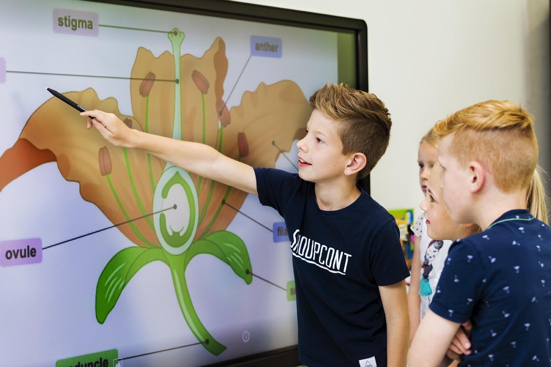 Pantalla Interactivas para colegios en la comunidad de Madrid